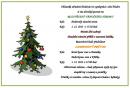 13-kultura-rozsveceni-vanocniho-stromu.png